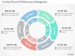 Business Diagram Circular Process Of Performance Management PowerPoint Templates