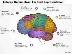 Business Diagram Colored Human Brain For Text Repesentation Presentation Template