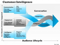 Business Framework Customer Intelligence PowerPoint Presentation