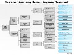 Business Framework Customer Servicing Human Expense Flowchart PowerPoint Presentation