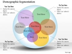 Business Framework Demographic Segmentation PowerPoint Presentation