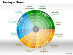Business Framework Employer Brand PowerPoint Presentation