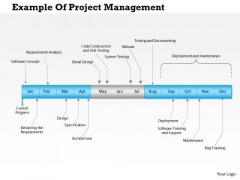 Business Framework Example Of Project Management PowerPoint Presentation
