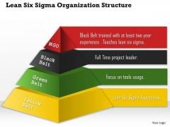 Business Framework Lean Six Sigma Organization Structure PowerPoint Presentation