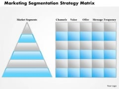Business Framework Marketing Segmentation Strategy Matrix PowerPoint Presentation