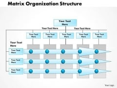 Business Framework Matrix Organization Project Management PowerPoint Presentation