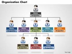 Business Framework Organization Chart PowerPoint Presentation