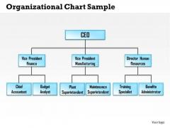 Business Framework Organizational Chart Sample PowerPoint Presentation