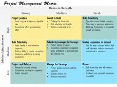 Business Framework Project Management Matrix PowerPoint Presentation
