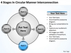 Business Management Strategy Manner Interconnection Ppt Development Template