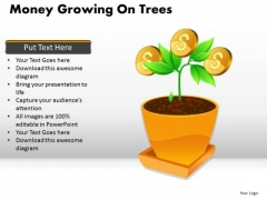 Business Money Growing On Trees PowerPoint Slides And Ppt Diagram Templates
