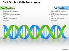Business PowerPoint Template Dna Double Helix For Human Ppt Templates