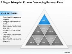Business Process Diagram Chart Triangular Developing Plans Ppt PowerPoint Slides