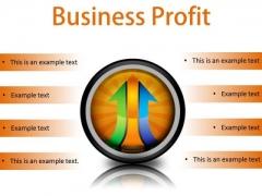 Business Profit Marketing PowerPoint Presentation Slides Cc