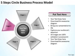 Business Strategy Consultants 5 Steps Circle Process Model Plan