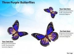 Business Strategy Model Three Purple Butterflies Icons