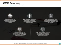 CMM Summary Ppt PowerPoint Presentation Professional Slide Download