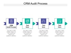 CRM Audit Process Ppt PowerPoint Presentation Model Slide Cpb