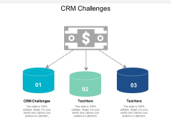 CRM Challenges Ppt PowerPoint Presentation File Example File Cpb