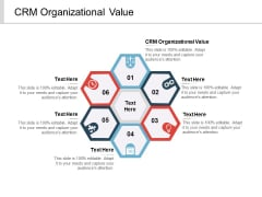 CRM Organizational Value Ppt PowerPoint Presentation Outline Skills Cpb