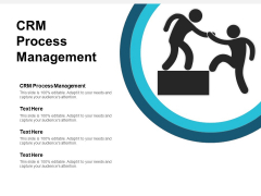 CRM Process Management Ppt PowerPoint Presentation Styles Example  Cpb