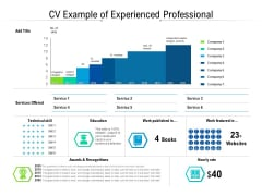 CV Example Of Experienced Professional Ppt PowerPoint Presentation Professional Infographic Template PDF