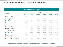 Calculate Business Costs And Revenues Ppt PowerPoint Presentation Styles Inspiration