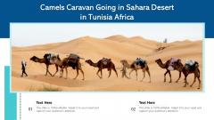 Camels Caravan Going In Sahara Desert In Tunisia Africa Ppt PowerPoint Presentation Icon Slides PDF