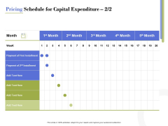 Capex Proposal Template Pricing Schedule For Capital Expenditure Month Inspiration PDF