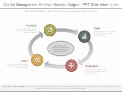 Capital Management Analysis Sample Diagram Ppt Slide Information
