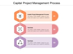 Capital Project Management Process Ppt PowerPoint Presentation Ideas Display Cpb