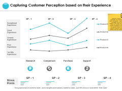 Capturing Customer Perception Based On Their Experience Ppt PowerPoint Presentation Pictures Ideas