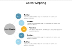 Career Mapping Ppt PowerPoint Presentation Infographics Display Cpb