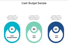 Cash Budget Sample Ppt PowerPoint Presentation Outline Summary Cpb