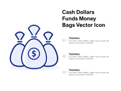 Cash Dollars Funds Money Bags Vector Icon Ppt PowerPoint Presentation Gallery Deck
