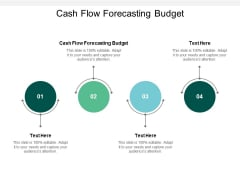 Cash Flow Forecasting Budget Ppt PowerPoint Presentation Pictures Inspiration Cpb