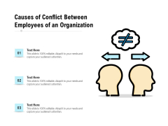 Causes Of Conflict Between Employees Of An Organization Ppt PowerPoint Presentation Pictures Microsoft PDF