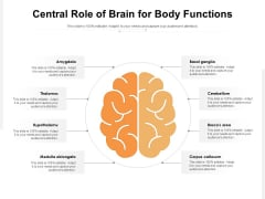 Central Role Of Brain For Body Functions Ppt PowerPoint Presentation File Graphic Tips PDF