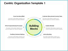 Centric Organization Template Effort Client Centric Strategies Summary PDF