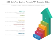 Ceo Skills And Qualities Template Ppt Examples Slides