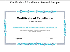 Certificate Of Excellence Reward Sample Ppt PowerPoint Presentation Model Format