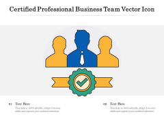 Certified Professional Business Team Vector Icon Ppt PowerPoint Presentation Infographics Templates PDF