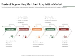 Challenges And Opportunities For Merchant Acquirers Basis Of Segmenting Merchant Acquisition Market Microsoft PDF