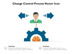 Change Control Process Vector Icon Ppt PowerPoint Presentation Gallery Ideas PDF