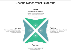 Change Management Budgeting Ppt PowerPoint Presentation File Themes Cpb
