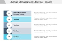 Change Management Lifecycle Process Ppt PowerPoint Presentation Slides Styles Cpb
