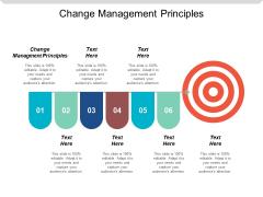 Change Management Principles Ppt Powerpoint Presentation Inspiration Graphics Cpb