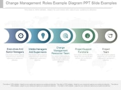 Change Management Roles Example Diagram Ppt Slide Examples