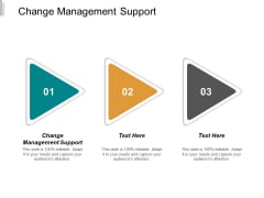 Change Management Support Ppt PowerPoint Presentation Styles Design Inspiration Cpb