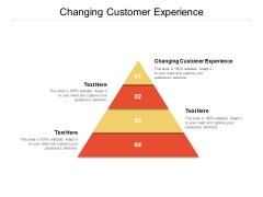 Changing Customer Experience Ppt PowerPoint Presentation Styles Graphics Template Cpb